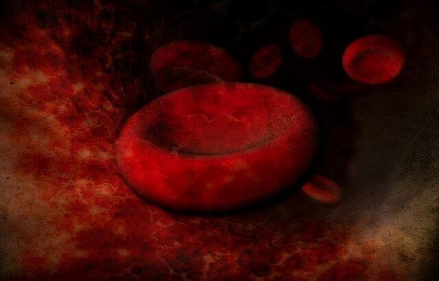 globulo rojo en 3d