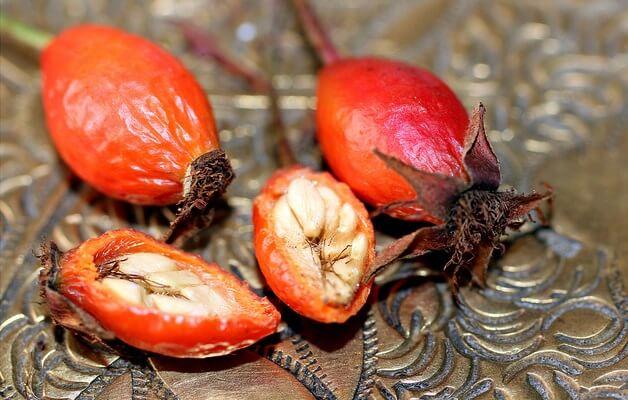 escaramujo y sus semillas en un plato bonito