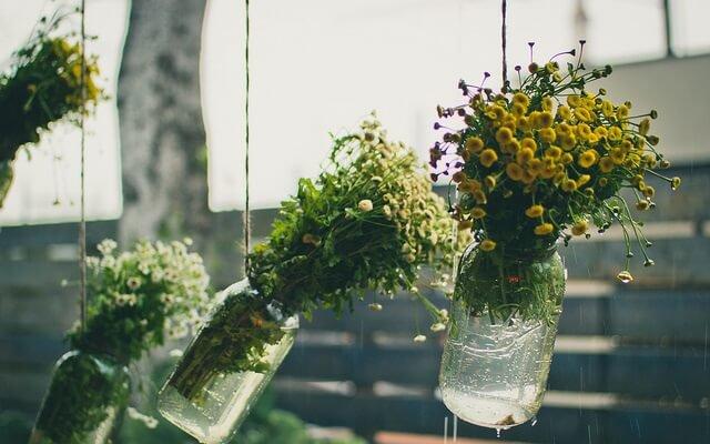 flores colgadas en jarras