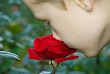 Oler las rosas
