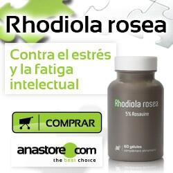 Rhodiola (Rhodiola Rosea). Usos y propiedades medicinales.