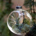 brillar en navidad