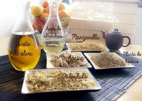 ingredientes maceracion