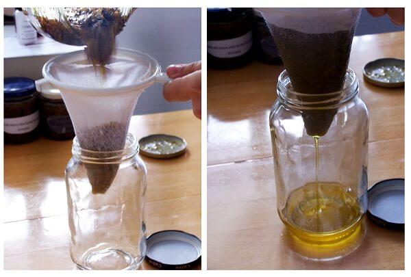 pasos del filtrado del aceite macerado