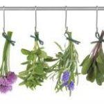 Remedios naturales para la tos.