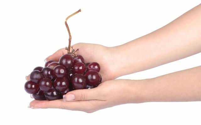 unas manos de mujer sostienen un racimo de uvas