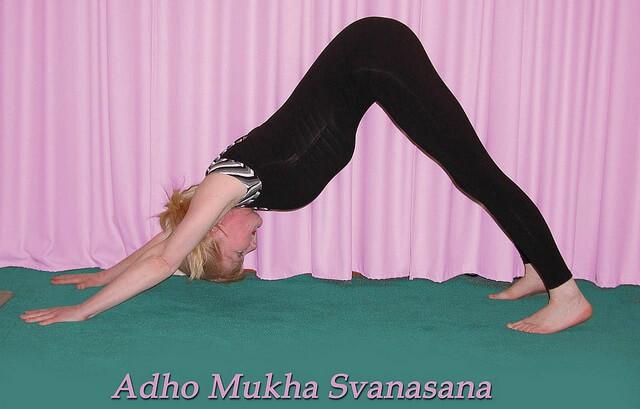 una chica practicando la postura del perro de yoga