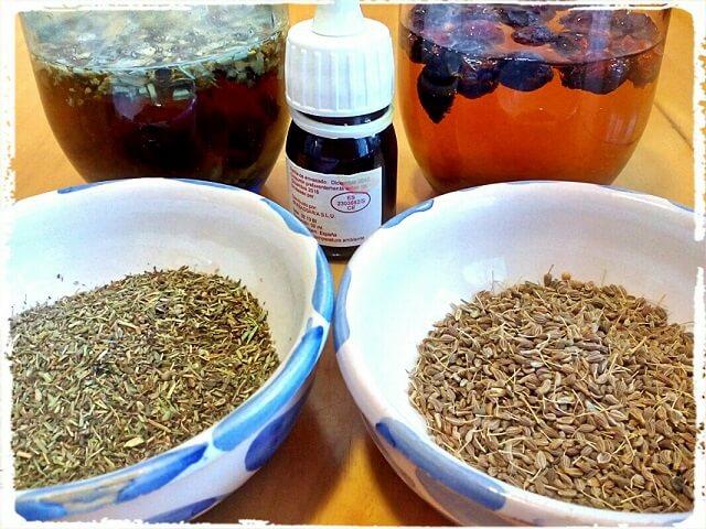 varios bol con plantas medicinales
