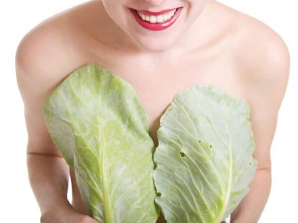 chica con dos hojas grandes tapando sus senos
